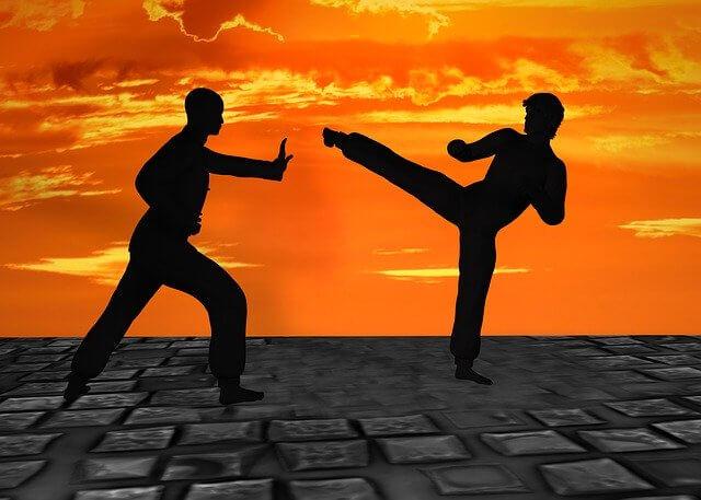 martial-arts-2544677_640.jfif